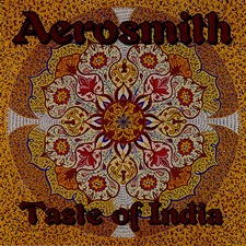 Aerosmith - Taste of India