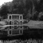 Black rose immortal – Opeth