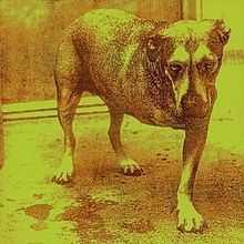 Alice in Chains - album omonimo