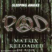 POD - Sleeping Awake