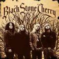 Black Stone Cherry - album omonimo
